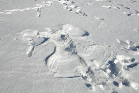 angelo-della-neve